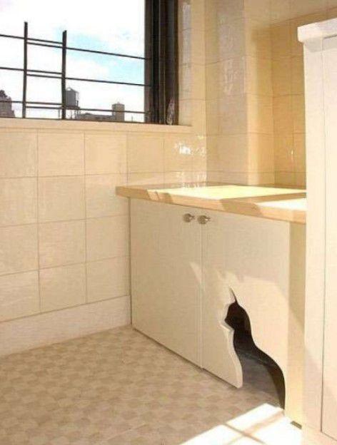 evde kedi tuvaletini saklamak için fikirler