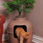 kedi tuvalet kutusu için fikirler