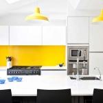 mutfak için plastik duvar boyları 2018
