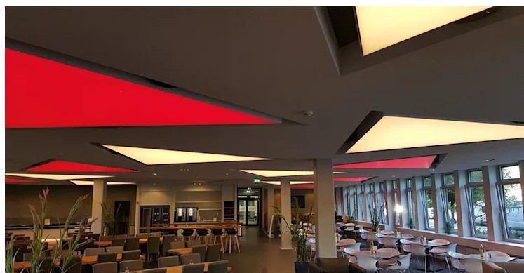 özel tasarım tavan dekorasyonları
