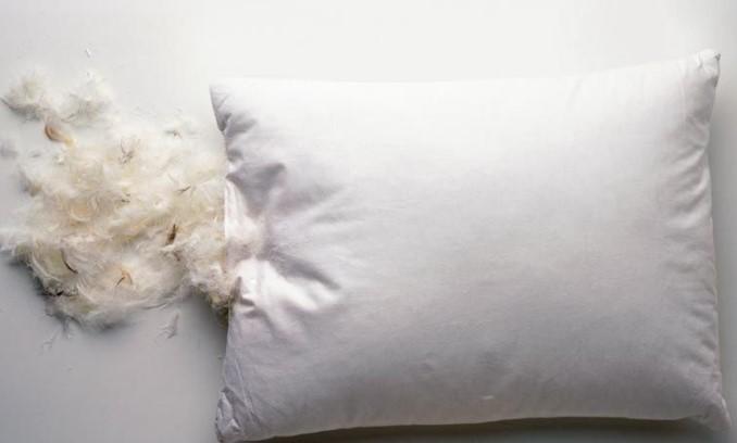 kuş tüyü yastıklar nasıl temizlenir ve yıkanır