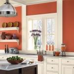 mutfak için mercan duvar rengi