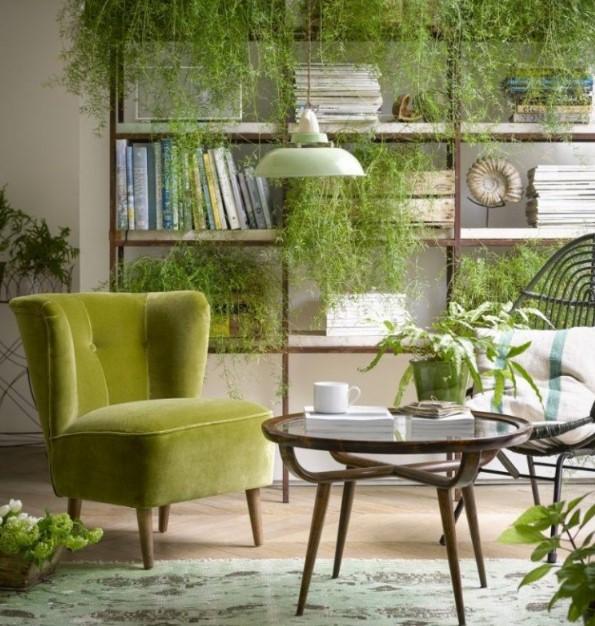 yeşil bitkiler ile ev dekorasyonu