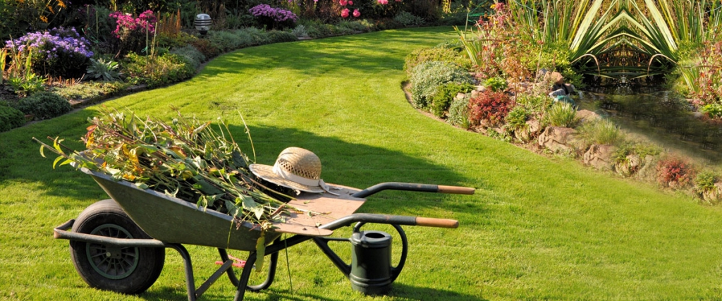 bahçe-bakımı-nasıl-yapılır