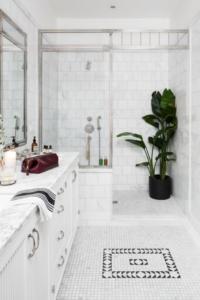 Banyo Dekorasyonu Bitki