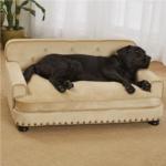 geniş köpek koltuğu