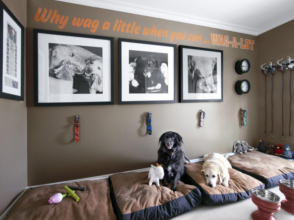 köpek yastıkları için alanlar
