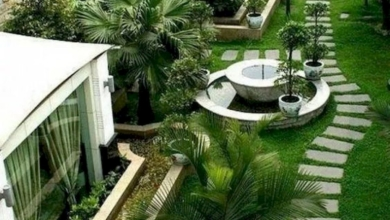 Modern Bir Bahçe Oluşturun